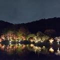 Photos: 薬師池公園【紅葉のライトアップ】3