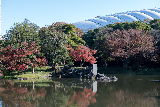 小石川後楽園【大泉水付近の紅葉】1