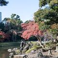 Photos: 小石川後楽園【大泉水付近の紅葉】2