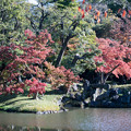 Photos: 小石川後楽園【大泉水付近の紅葉】3