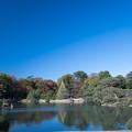 六義園【大泉水の眺め】1