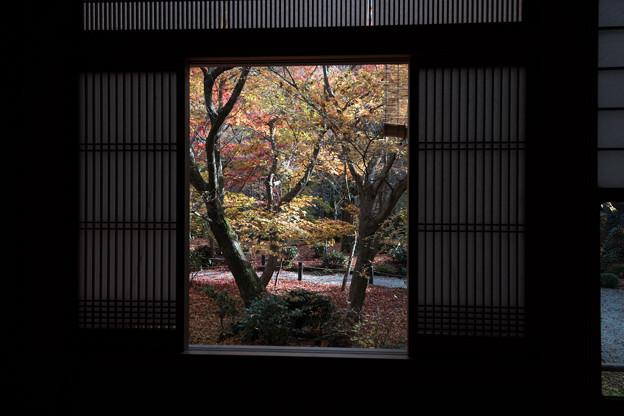 圓光寺【額縁庭園「十牛之庭」の紅葉】2