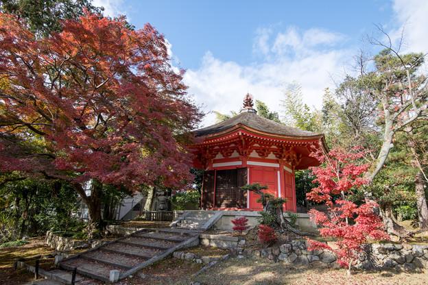 東福寺【愛染堂の眺め】