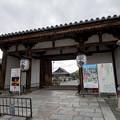 東寺【入口】