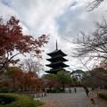 東寺【五重塔と紅葉】1
