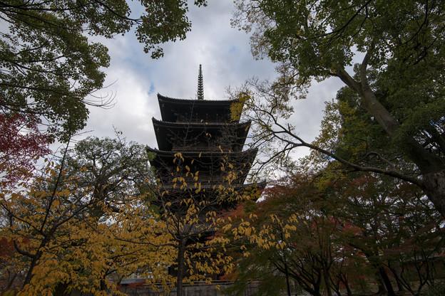 東寺【五重塔と紅葉】2