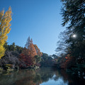 Photos: 新宿御苑【下の池近辺の紅葉】1