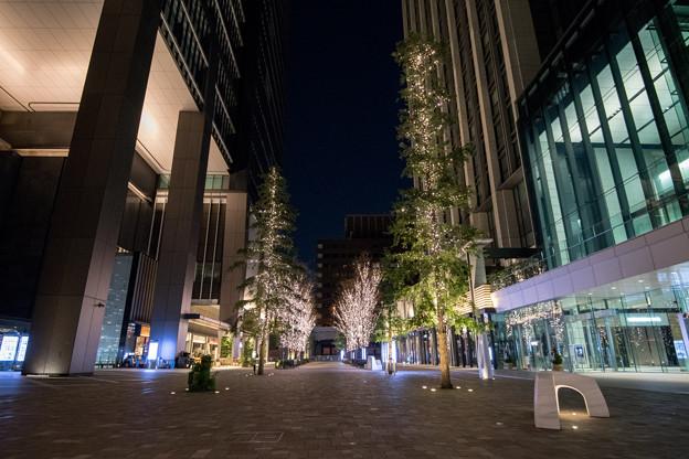 東京イルミネーション【大手町仲通り】1