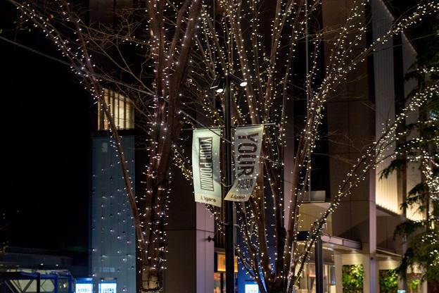 東京イルミネーション【大手町仲通り】4