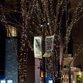 Photos: 東京イルミネーション【大手町仲通り】4