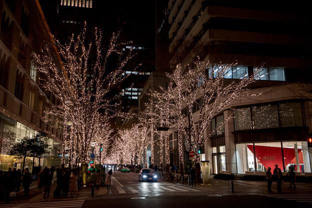 Photos: 東京イルミネーション【丸の内仲通り】1