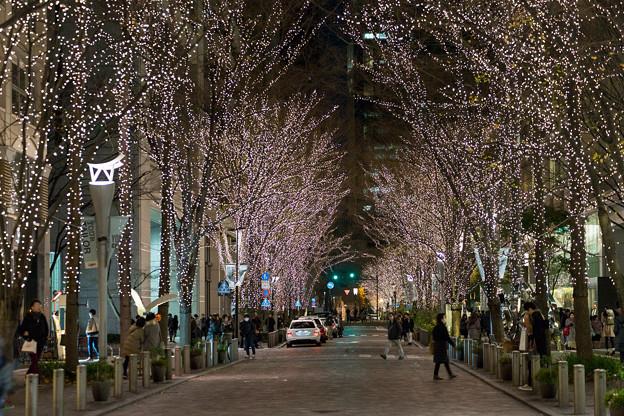 Photos: 東京イルミネーション【丸の内仲通り】2