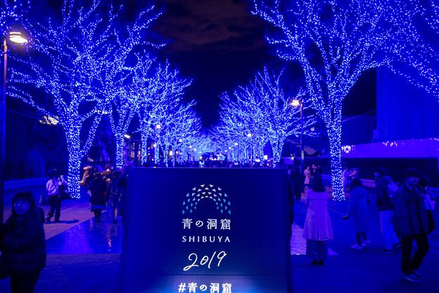 Photos: 東京イルミネーション【青の洞窟 SHIBUYA】1
