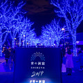 東京イルミネーション【青の洞窟 SHIBUYA】1