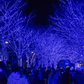 東京イルミネーション【青の洞窟 SHIBUYA】4