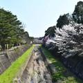 Photos: 昭和記念公園【朝掘川:もみじ橋からの眺め】