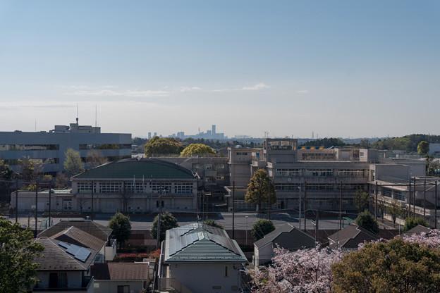 近所の緑道【川和富士公園から眺めるランドマークタワー】
