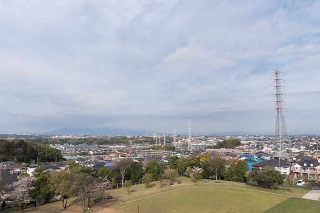 近所の緑道【川和富士公園から見えた大山】