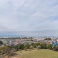 Photos: 近所の緑道【川和富士公園から見えた大山】