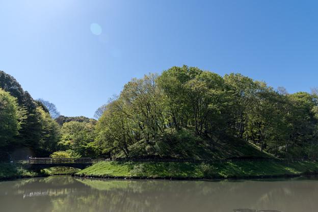 【新緑の四季の森公園】4