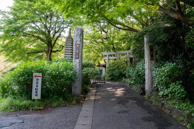 早朝ウォーキング【浄慶寺:山門】