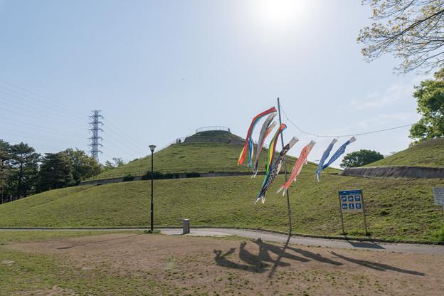 早朝ウォーキング【川和富士公園:鯉のぼり】