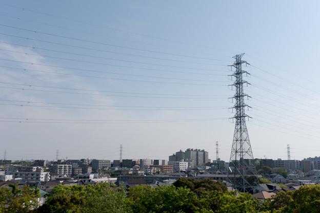 早朝ウォーキング【川和富士公園:仲町台方面】