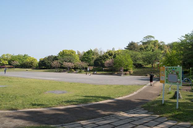 早朝ウォーキング【早渕公園】