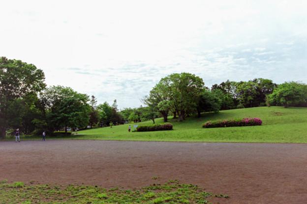 早朝ウォーキング【川出松公園】
