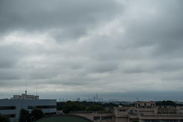 早朝ウォーキング【川和富士公園から見たみなとみらい】