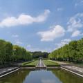 昭和記念公園【カナールの眺め】