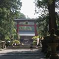 Photos: GoToTravel山梨旅行【北口本宮富士浅間神社】1