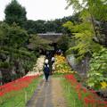 Photos: 西方寺【参道の眺め】1