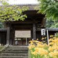 Photos: 西方寺【茅葺きの山門】1