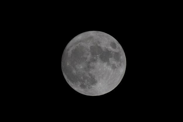 中秋の名月【α7R2】
