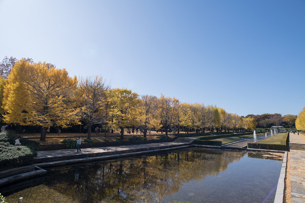 03昭和記念公園【カナールの光景】3