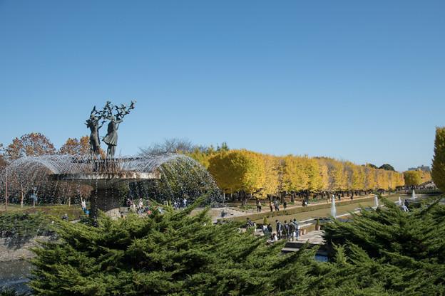05昭和記念公園【カナールの光景】5