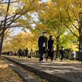 Photos: 04昭和記念公園【カナールの光景】4