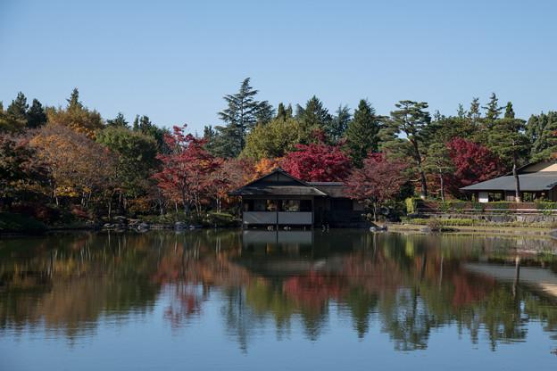 06昭和記念公園【日本庭園:清池軒】1
