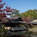 Photos: 07昭和記念公園【日本庭園:清池軒】2