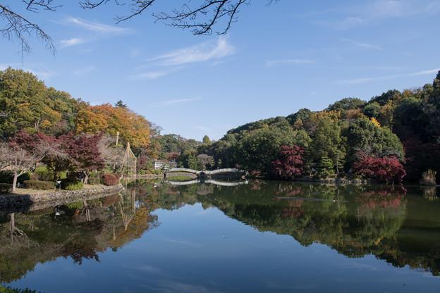 01薬師池公園【紅葉の様子】1