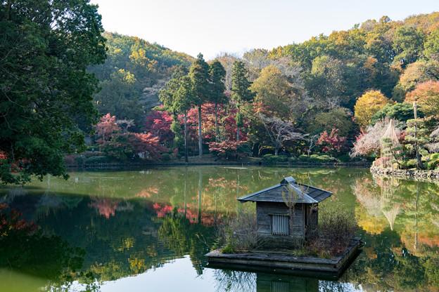 02薬師池公園【紅葉の様子】2
