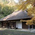 29薬師池公園【旧荻野家周辺の紅葉】4