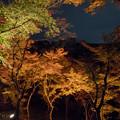Photos: 40京都紅葉狩り【清水寺:紅葉】2