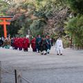 45京都紅葉狩り【下鴨神社:新嘗祭】1
