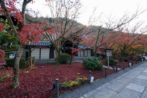 16京都の紅葉【永観堂:唐門付近】1