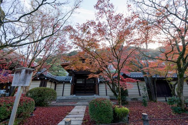 17京都の紅葉【永観堂:唐門付近】2