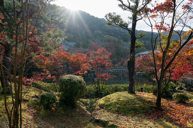 33京都の紅葉【永観堂:放正池付近】1