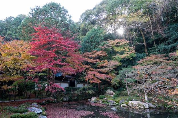 06京都の紅葉【南禅寺:南禅院】1