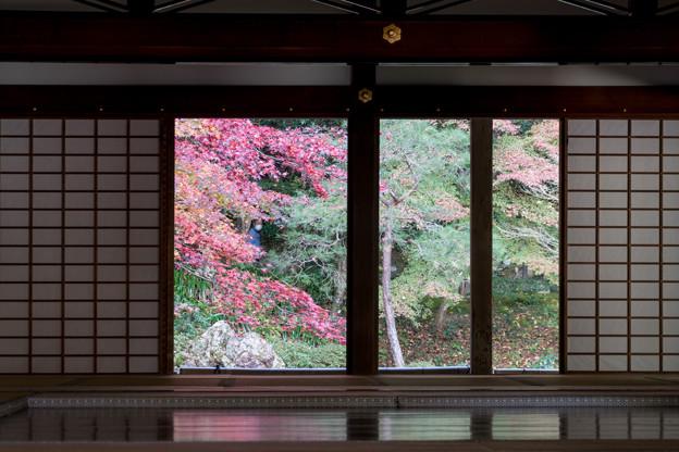 09京都の紅葉【南禅寺:南禅院】4